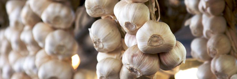 Grow it yourself: Garlic