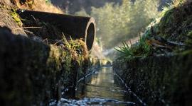 Offene Hydrokultursysteme - die Grundlagen