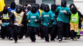 Der Great Gorilla Run in London - mit Unterstützung von CANNA