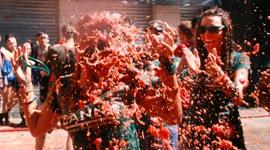 Veni, vidi, vici – La Tomatina 2014